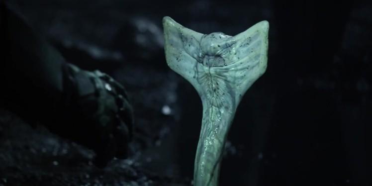 art-prometheus-alien-parasite